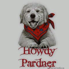 howdy_pardner