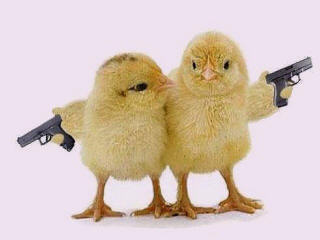 naked_chicks_with_guns