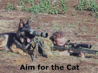 perfect_hunting_dog