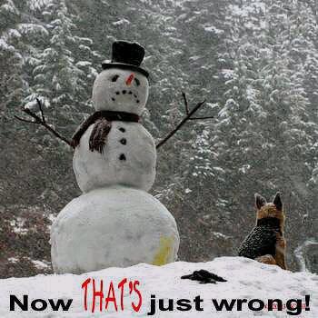 thats_wrong